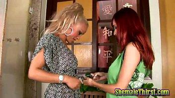 girl sucks dog beaestality cock Sexnpornco german babes